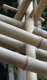 Bambus Lexikon Bambuskonstruktionen Und Verbindungen
